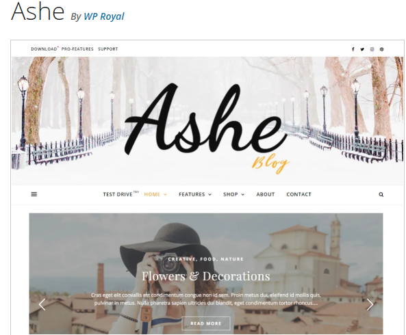 ashe feminine WordPress Blog Theme