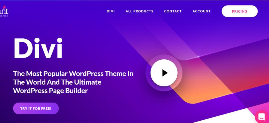 divi best WordPress Sports Themes