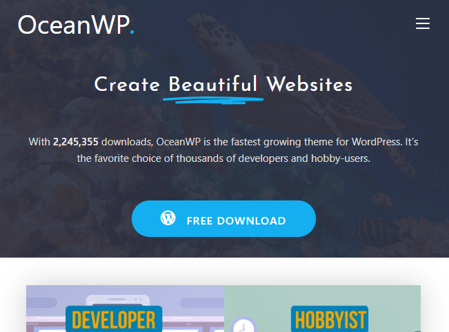 ocean best free themes in WordPress