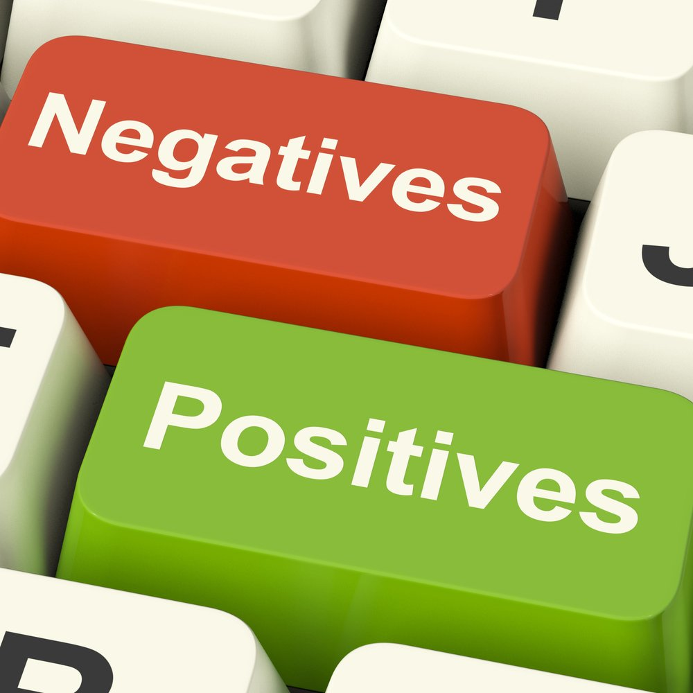 positives and negatives to choose a WordPress theme